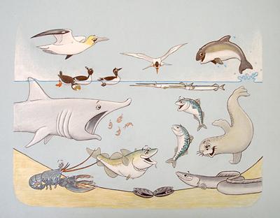 Jeroen Verhoeff Illustraties Biologie