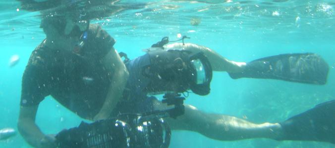 Jeroen Verhoeff filming wildlife under water.