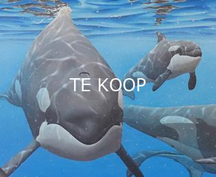 Jeroen Verhoeff Natuurschilderijen Te koop